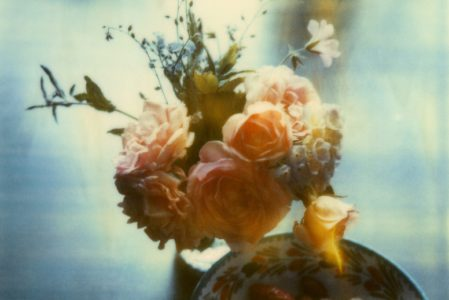 Rosen und Beeren