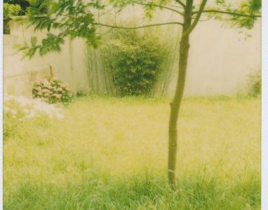 Garten von Jean-Pierre Doarnenz 2009